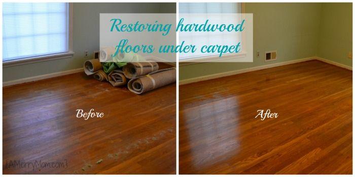 1000 Images About Carpet Flooring On Pinterest Carpet