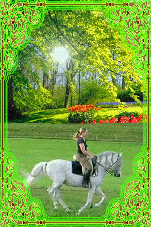 Днем, девушка на лошади анимации