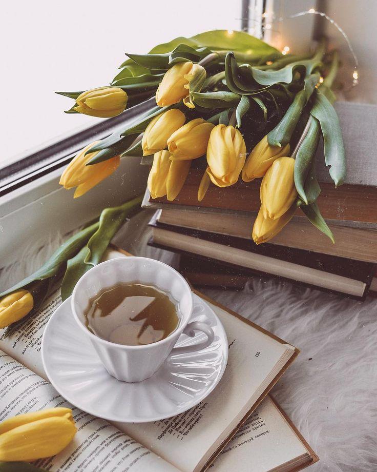 услышать желтые тюльпаны чай утро живые лучшие картинки статье будет представлена