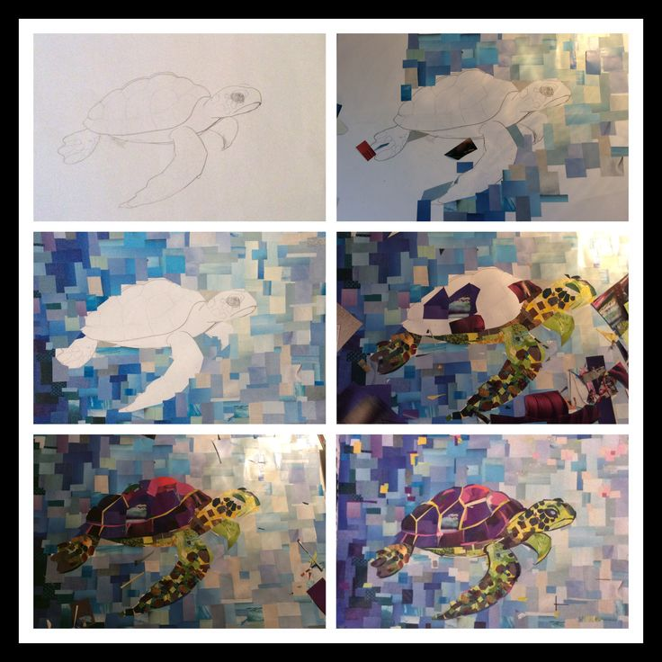 Turtle, step by step, made by a Piece of Paper City Wildlife, magazines art,