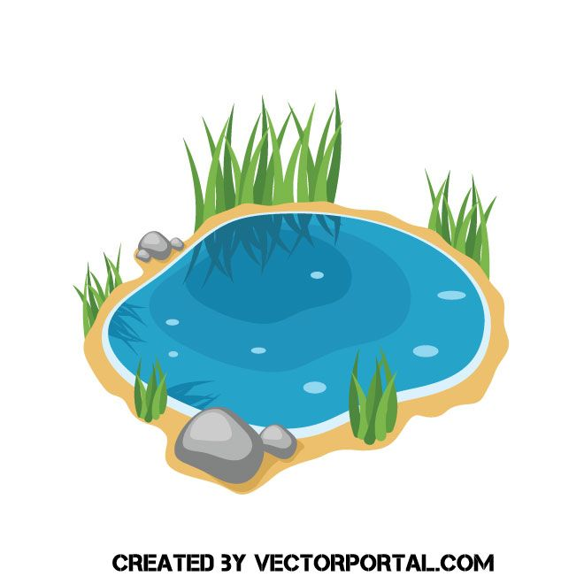 Pond Design Ideas Pictures