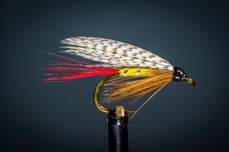1000 images about wet flies on pinterest nymphs fly for Wet fly fishing