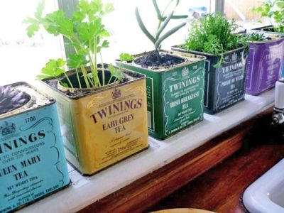 Adorable! Window sill herb garden - Tea cans