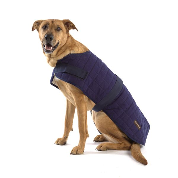Aussie Naturals Waterproof Dog Coat
