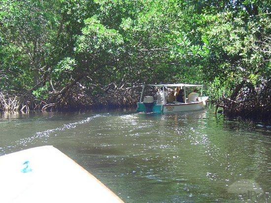La Laguna Restinga, Margarita Island, VENEZUELA