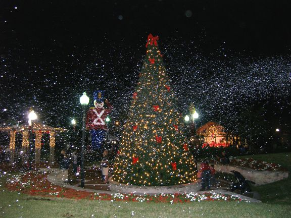 fake snow   Royal Palm Beach festival of Lights snow machine rental