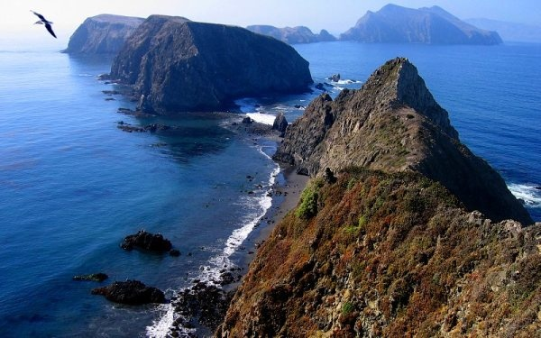 """Channel Islands National Park consists of five breathtaking islands (Anacapa, Santa Cruz, Santa Rosa, San Miguel, and Santa Barbara), each one """"hosting"""" incommensurable natural and cultural resources. This national park is a wonderful family getaway, a place for exploration and rediscovering. If you have a few hours to spare, you can get on a boat tour to Santa Cruz Islands or Anacapa via Island Packers. Whale Watch trips are being organized from December through April at Ventura, Oxnard and…"""