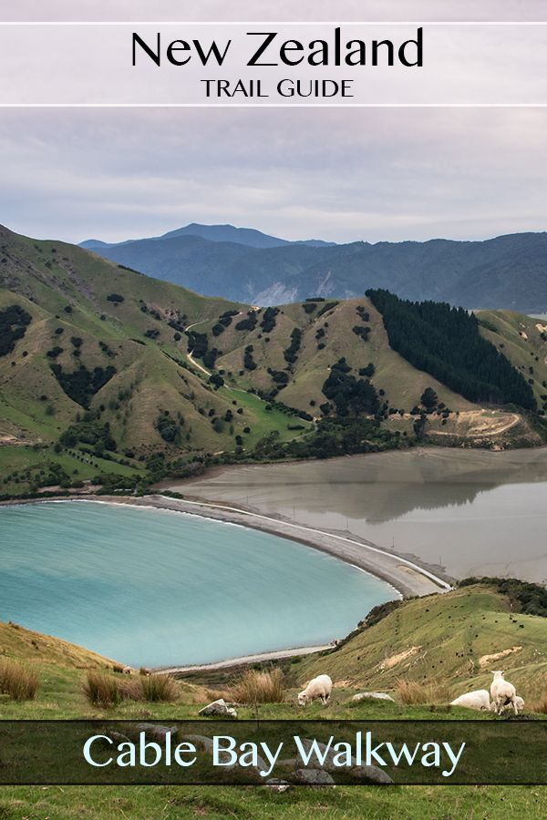 A fully photographed guide to the Cable Bay (Rotokura Bay) Walkway track near Nelson South Island New Zealand. #travel #guide #hiking #nelson #nz #newzealand #cablebay