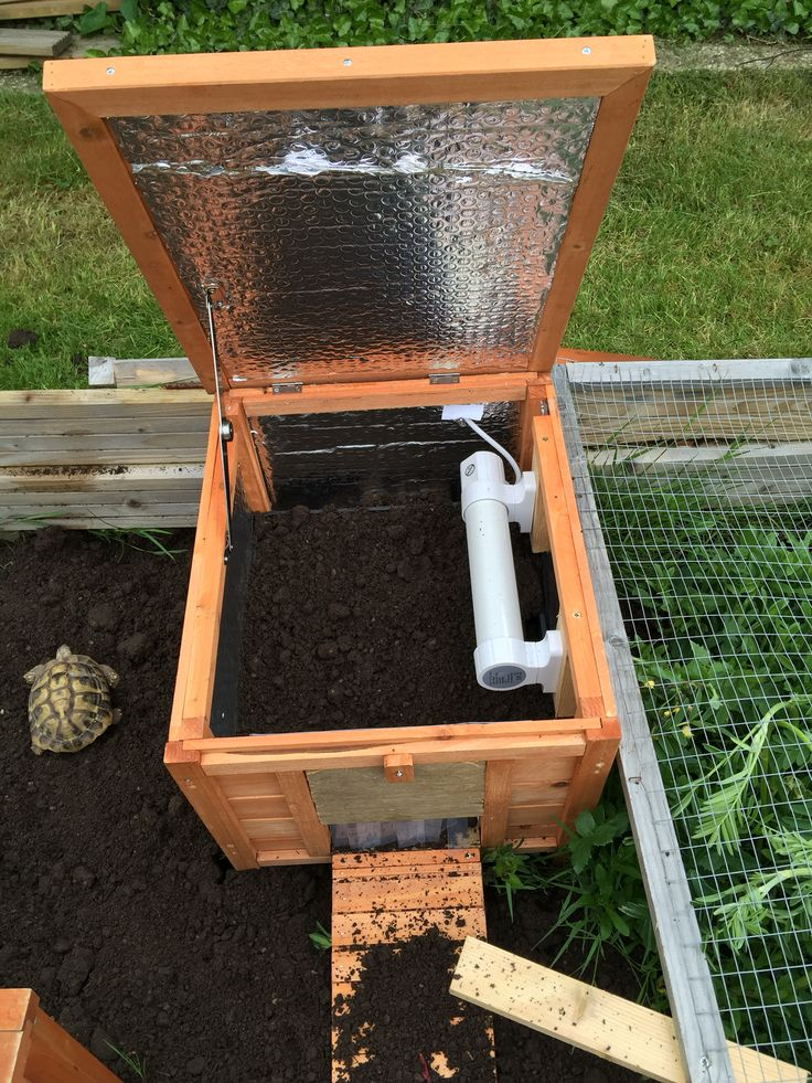 Heated and insulated tortoise house for colder nights