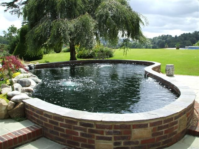 Clean simple above ground koi pond pinterest koi for Koi pool construction