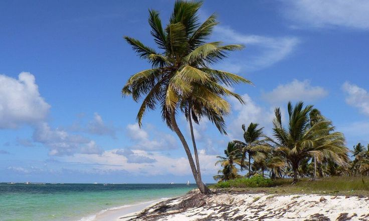 Check out Travel With reviews and photos of Dominican Republic. Discover hidden attractions, cool sights, and unusual things to do in Dominican Republic.