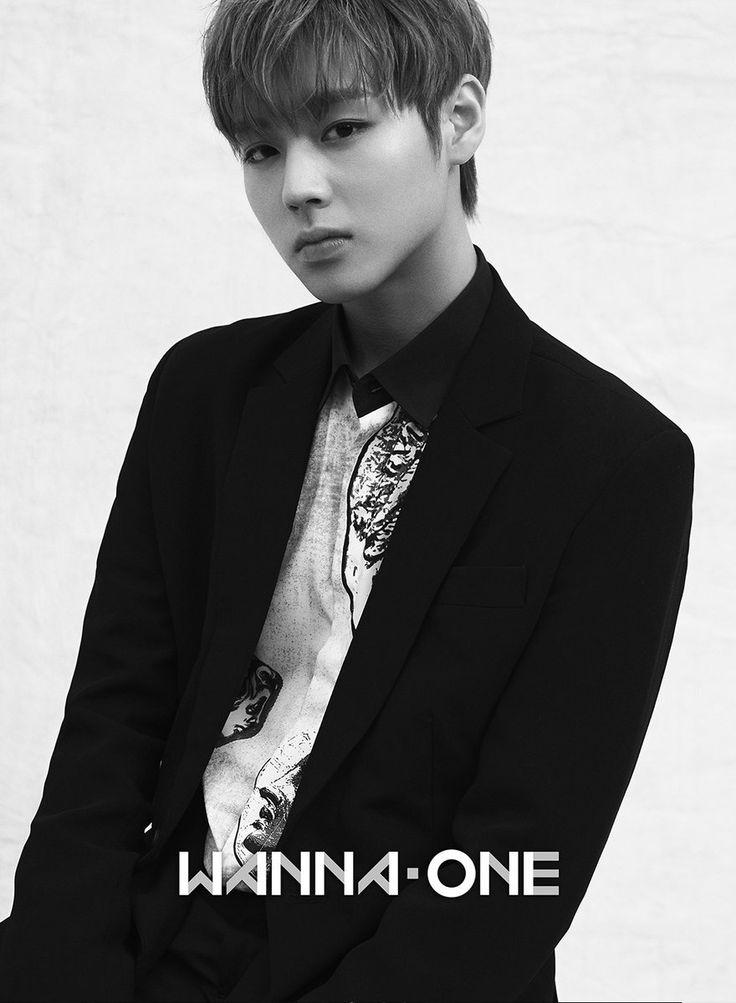 Wanna One Jihoon