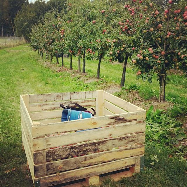 Feel like picking apples from across the ocean? Make it Happen with IRE!