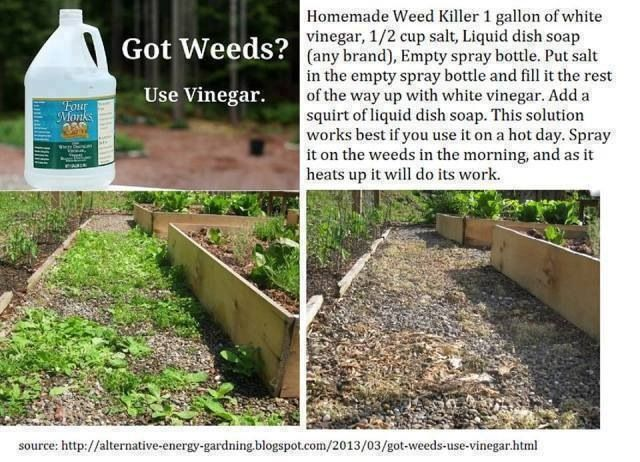 Natural weed killer. Just be careful, It will kill any plant so apply with care.
