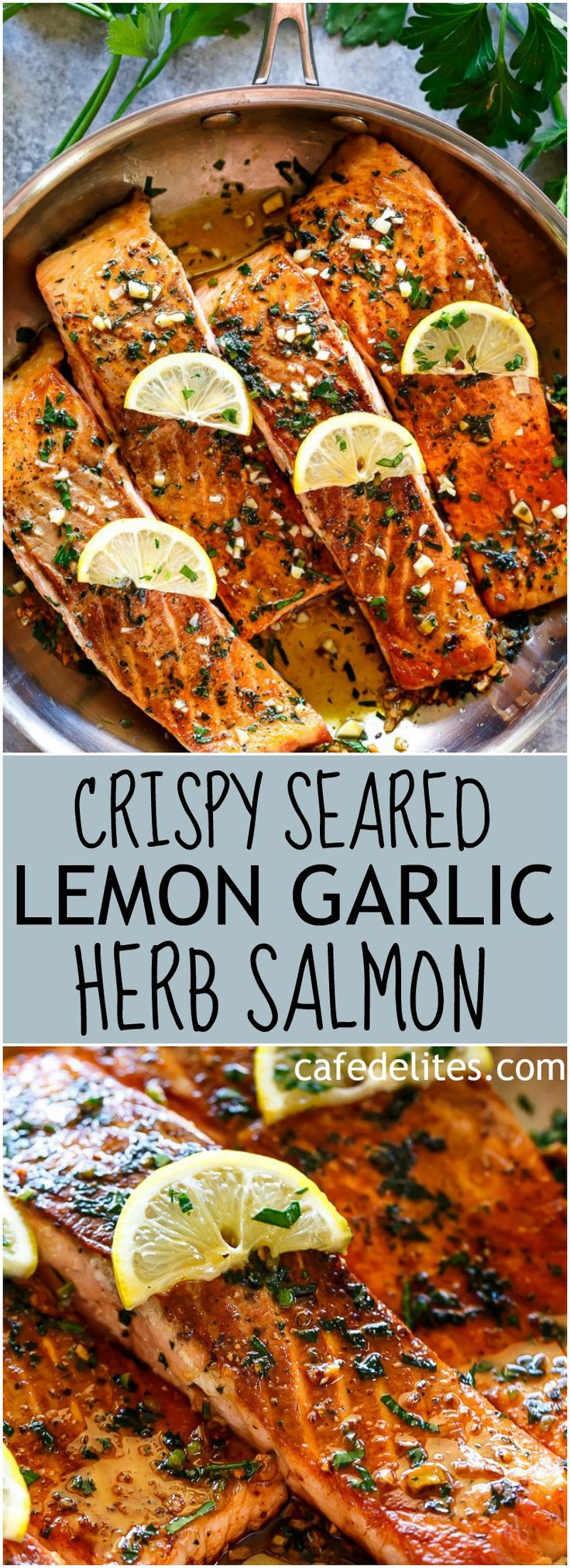Crispy Seared Lemon Garlic Herb Salmon is a deliciously easy salmon recipe, so simple to make, yet so delicious! Crispy on the outside, soft and tender on the inside! | https://cafedelites.com