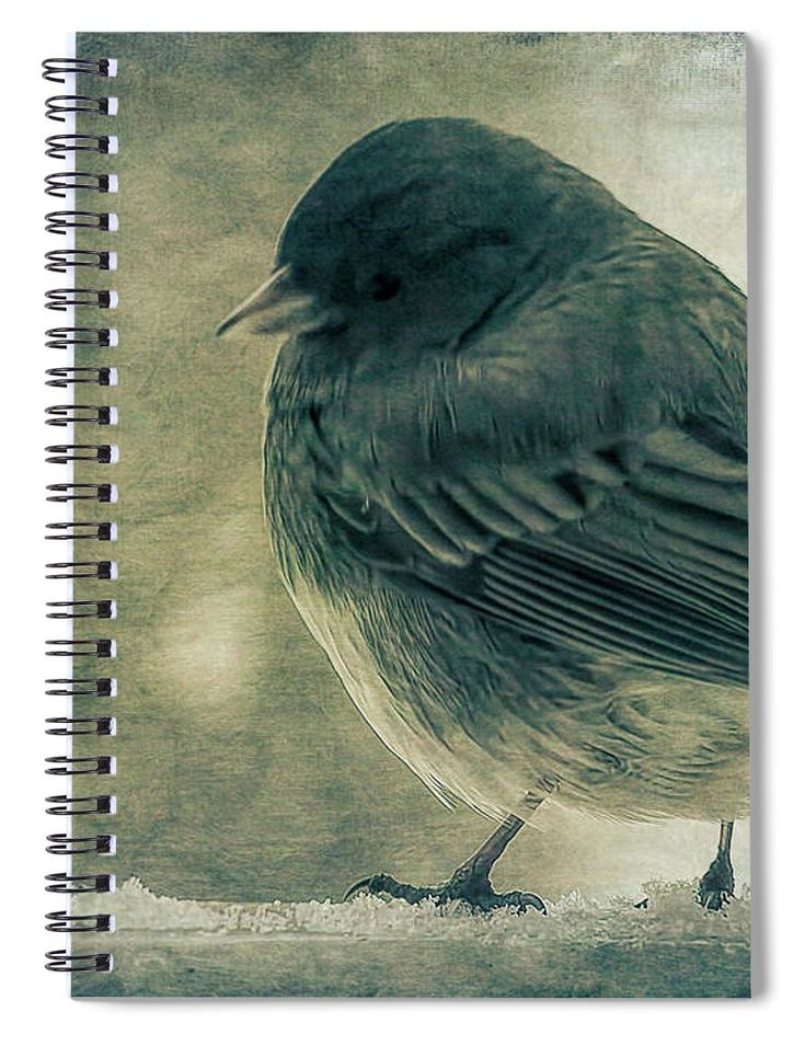 """This 6"""" x 8"""" spiral notebook features the artwork """"The Visitor"""" by Leslie Montgomery on the cover and includes 120 lined pages for your notes and greatest thoughts."""