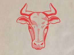 Afbeeldingsresultaat voor cow illustration