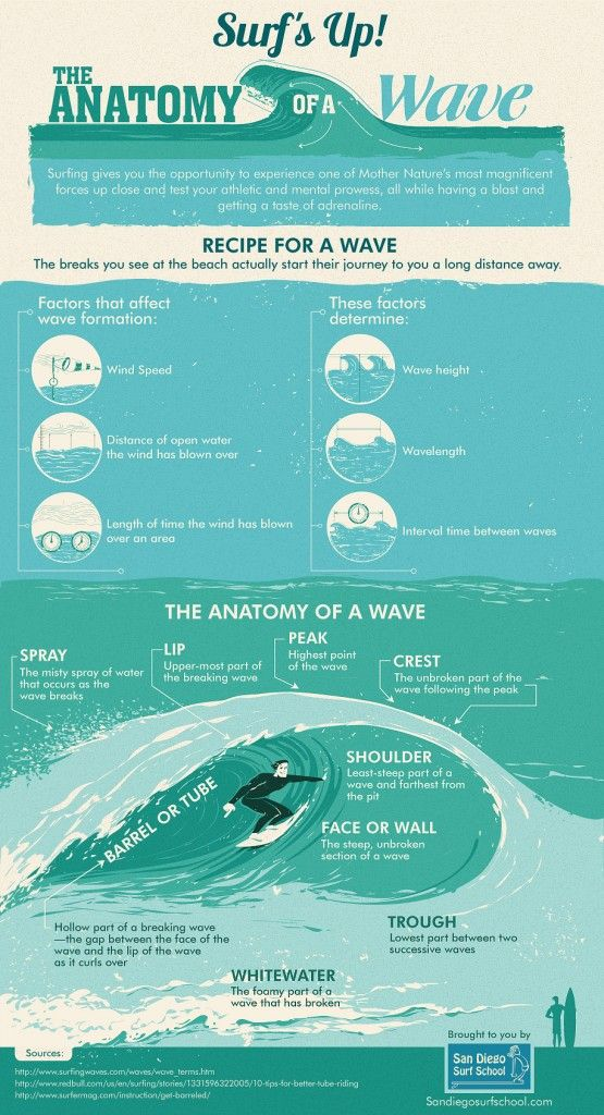 Surfing gives you the opportunity to experience one of mother nature's most magnificent forces up close. You can test your athletic and mental prowess, all while having a blast and getting a taste of adrenaline. Enjoy reading San Diego Surf School's infographic on the anatomy of a wave