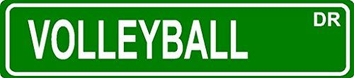 VOLLEYBALL Aluminum street sign 4x18 great Dcor for any room or garage *** Click on the image for additional details.