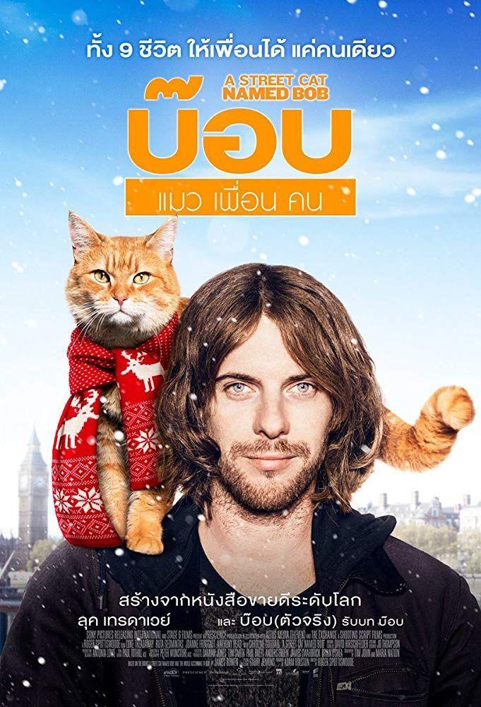 A Street Cat Named Bob (2016) Photo Gallery IMDb