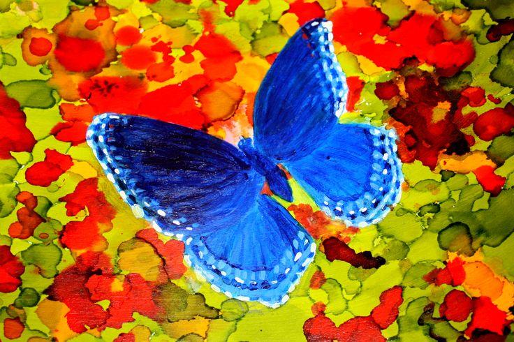 Butterfly in Red Garden  Artist, Wendi Kelly