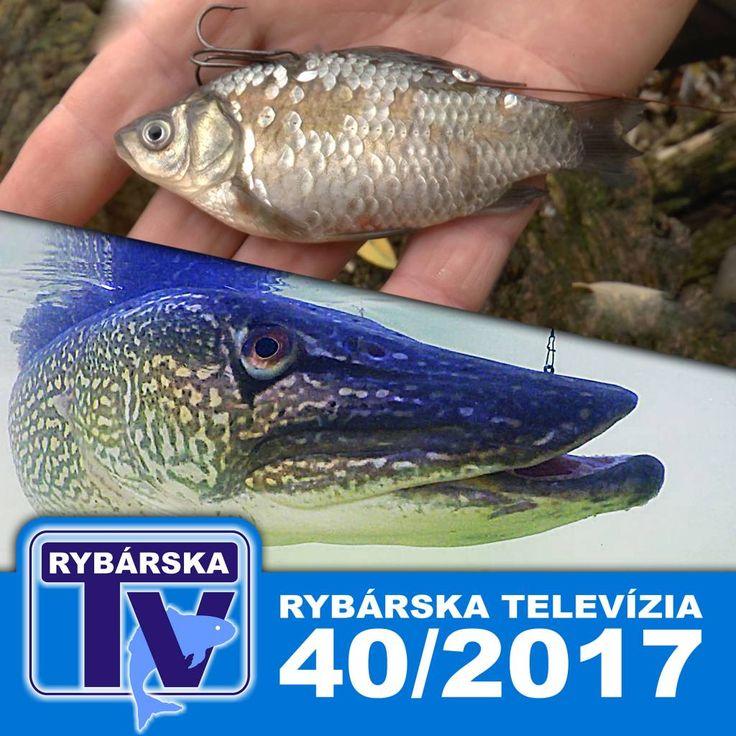 Rybárska Televízia 40/2017 - relácia pre rybárov o rybách a rybolove
