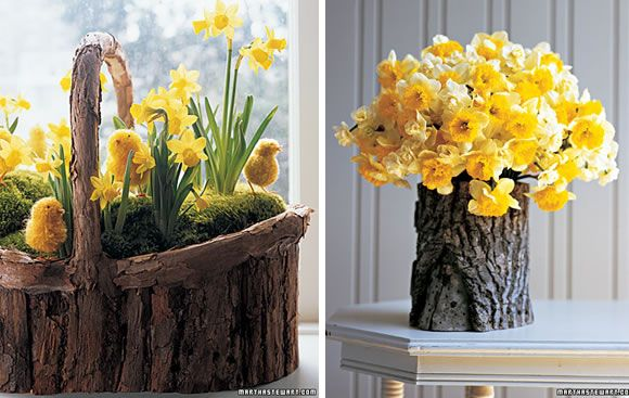 daffodils in flower arrangements | Daffodil and pom chick basket and faux bois Daffodial arrangement ...