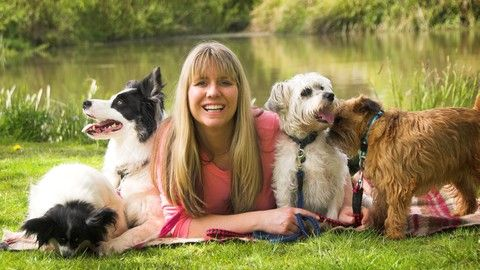 Learn how to run a successful dog training or dog related business, attract your ideal clients & charge high prices