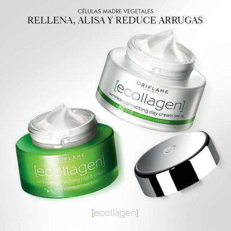 Ecollagen está elaborada con células madres vegetales, factor esencial para el crecimiento y desarrollo de las plantas, de igual manera ayuda a regenerar el colágeno en tu piel, reduciendo las arrugas en un 33%. ¡Para mayor efectividad, prueba toda la línea!