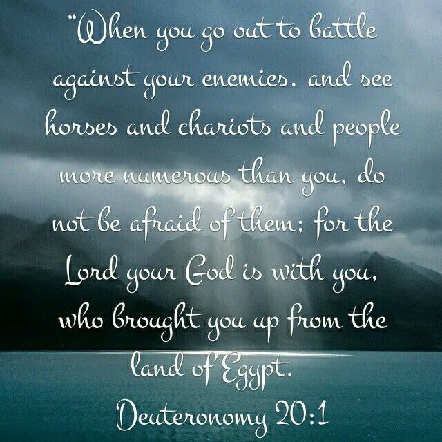 Image result for deuteronomy 20 1