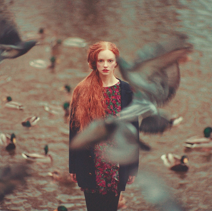 Best OLEG OPRISCO Images On Pinterest Oleg Oprisco - Beautiful surreal photography oleg oprisco