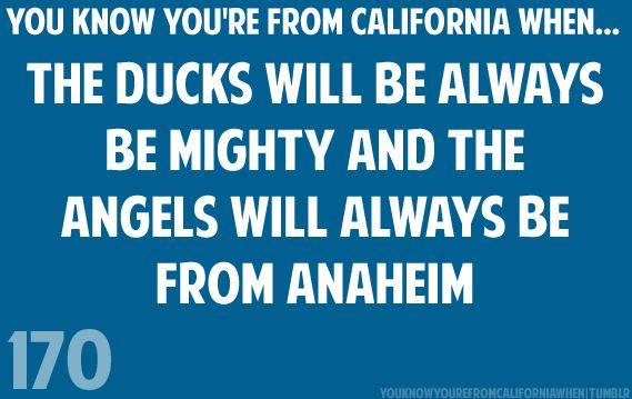 Anaheim Angels not this bull LA Angels of Anaheim!