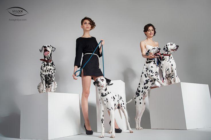 проект, студия, фотосессия, MyLook, Саратов, фотограф, Кулагин Илья, Далмантинцы, собаки, модели