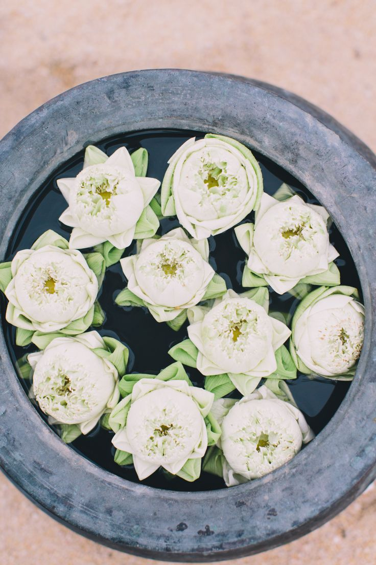 26 best wedding flowers images on pinterest wedding marriage open lotus flowers takeustothailand dhlflorist Images