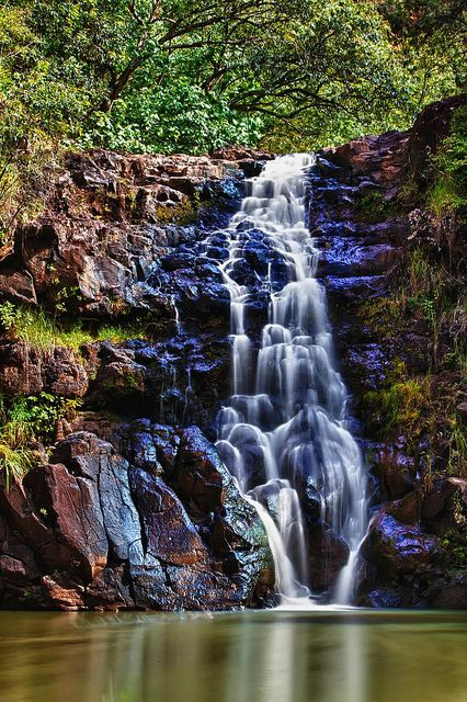 Waimea Falls ~ North Shore ~ Oahu, Hawaii • by Darrel Larson via Flickr www.tropicalphotosbylarson.com