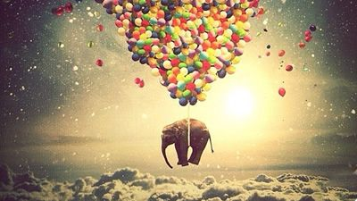 O que você sabe sobre seus sonhos? Curiosidades.
