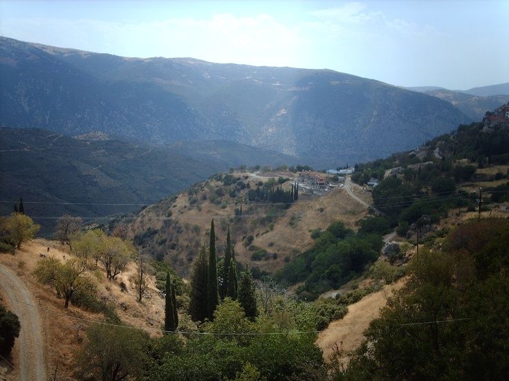 View from the Oracle and Delphi, definitely making my way back here one day.
