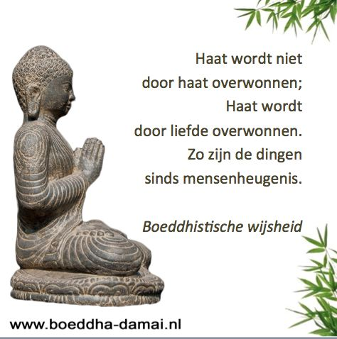 www.boeddha-damai.nl