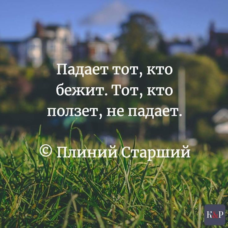 #knpartners #lawyer_ua #lawyer