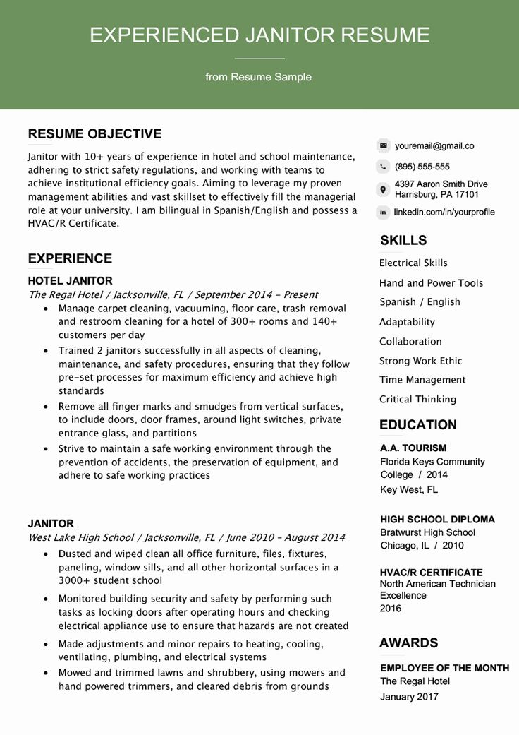 Professional Headline Resume Examples Lovely Resume