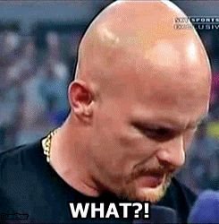 stone cold steve austin WHAT?