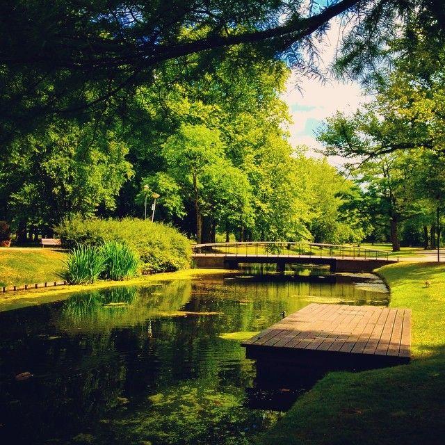 Het Park, Rotterdam
