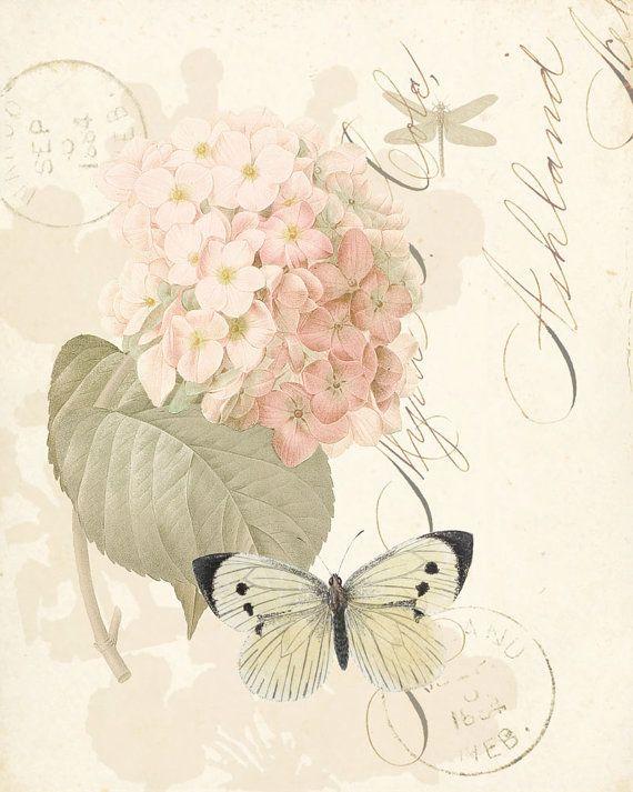An English Garden Collage Wall Decor Print