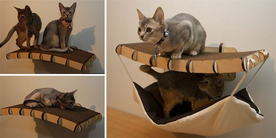Seriously cool cat furniture from South Africa!  (Hope they decide to ship internationally one day!)    From www.moderncat.net.