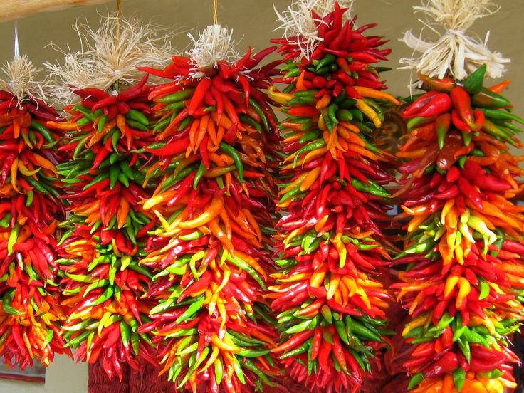 I have an obsession with chili peppers all of a sudden. Would love to get some of these to hang in the kitchen.