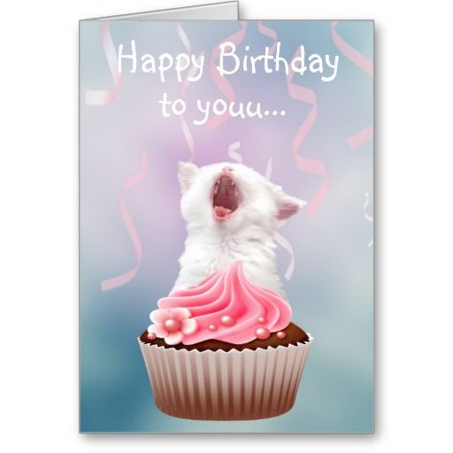>>>best recommended          Happy Birthday kitten Card           Happy Birthday kitten Card In our offer link above you will seeReview          Happy Birthday kitten Card Review from Associated Store with this Deal...Cleck link More >>> http://www.zazzle.com/happy_birthday_kitten_card-137808455328933922?rf=238627982471231924&zbar=1&tc=terrest