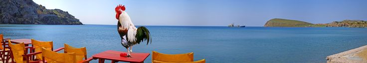 Lemnos Island Exhibition miavoltamono@yahoo.gr https://www.flickr.com/photos/brenikou/sets/72157629885642890/with/32658185390/