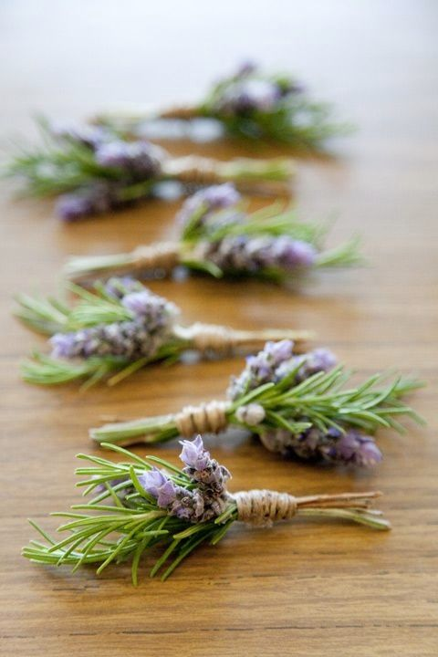 boutonnieres of lavender and rosemary wrapped in raffia with the stems showing