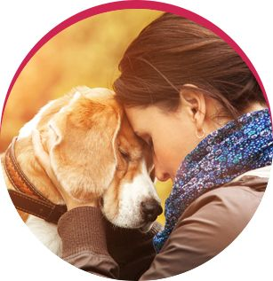 As all aspects of our pet cremation services are carried out on-site here at Tamar Valley, we guarantee a dignified and personal approach when caring for your pet. After your individual cremation,