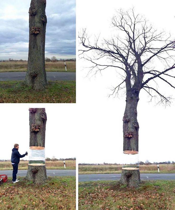 Denna illusion av ett svävande träd skapades av Daniel Siering och Mario Shu i Potsdam, Tyskland förra året. De lindade in ett träd i plast som de sedan spraymålade för att efterlikna bakgrunden.